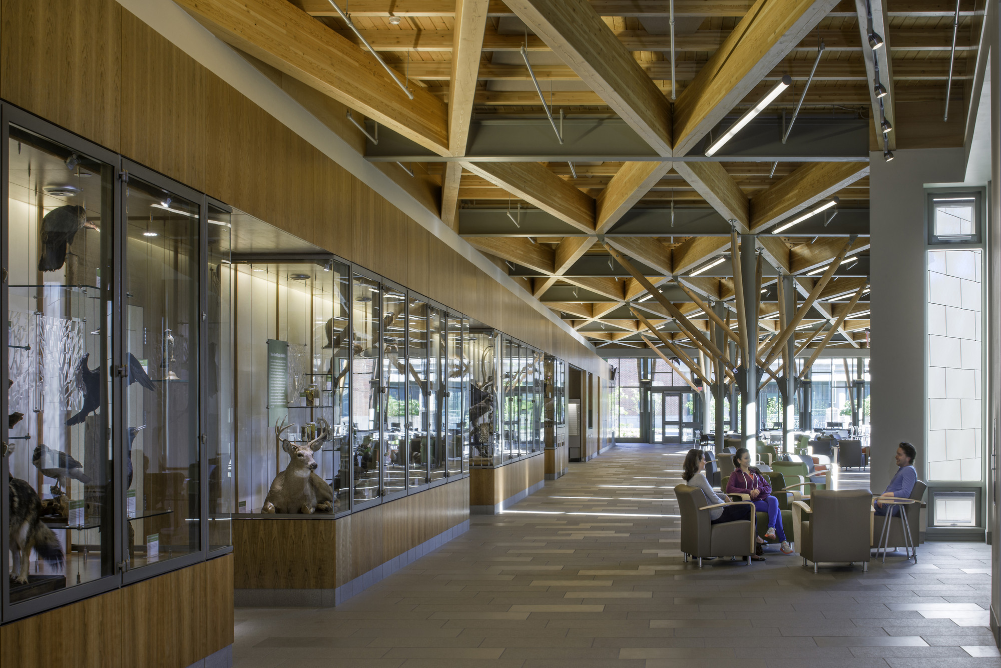 Gateway Center - SUNY-ESF College of Environmental Science & Forestry; Syracuse, NY / Architerra © David Lamb