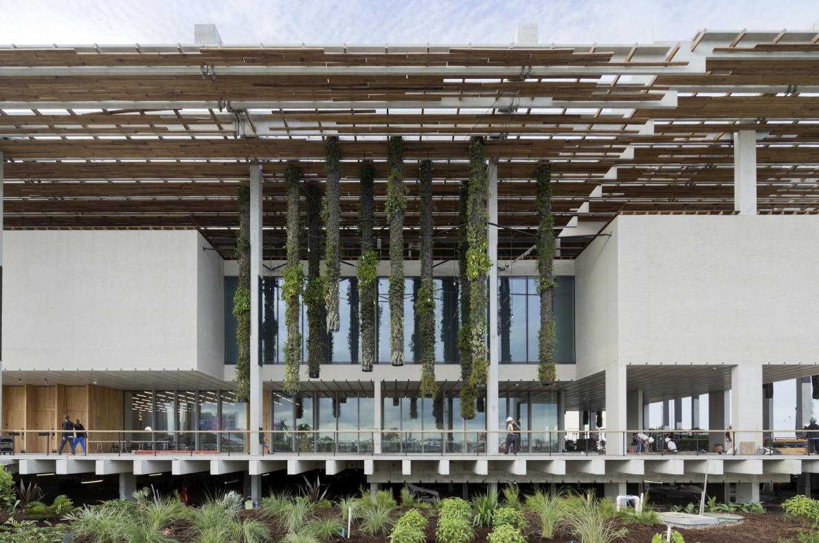 Museo de Arte Pérez, Miami © Iwan Baan