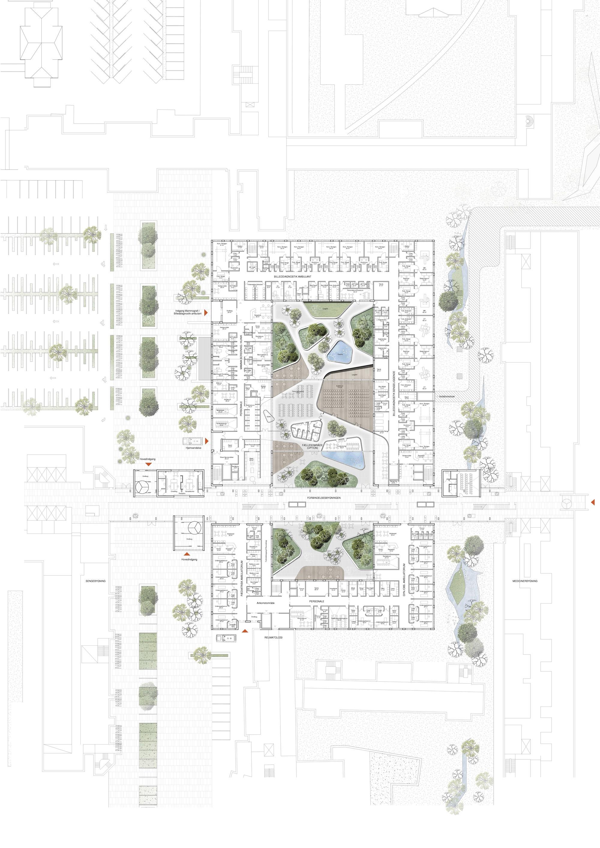 Maternity Hospital Floor Plan Floor Plan Hospital Design Building A Vet Practice Mid Coast