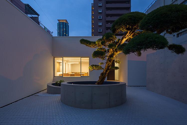 Casa con árbol Podocarpus / Yasutoshi Mifune + Toru Atarashi, © Yasunori Shimomura