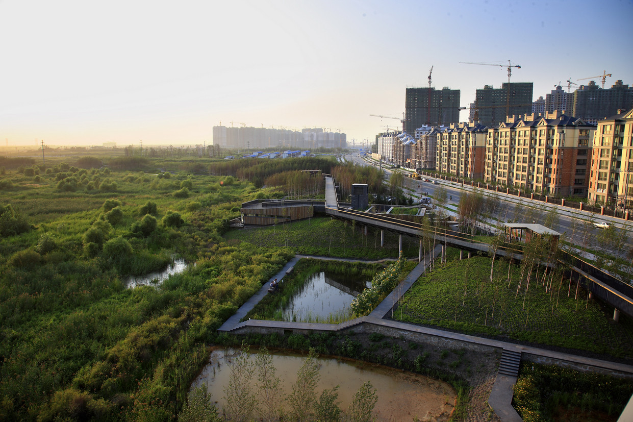 Qunli Stormwater: © Turenscape, Beijing, China