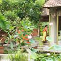 Exterior image of the Architect's Residence: The grass court. Image Courtesy of Indigo Architects, Ahmedabad