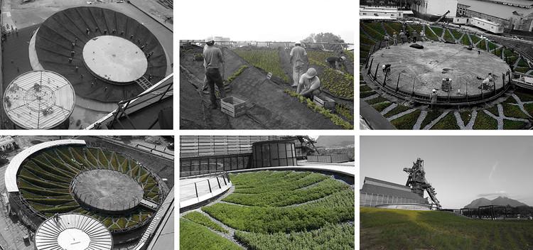 Construcción. Image © Harari Landscape Architecture