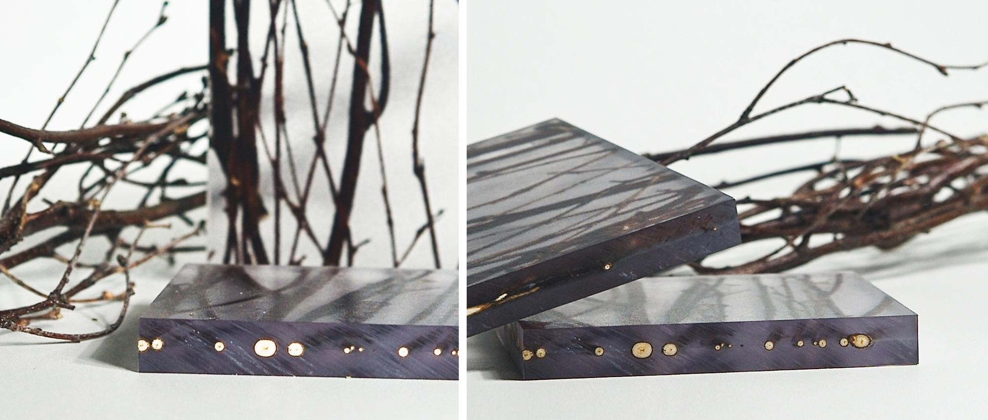 Detalle Modelo Birch