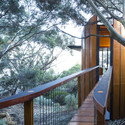 Tree Top Studio / Max Pritchard Architect. Image © Sam Noonan