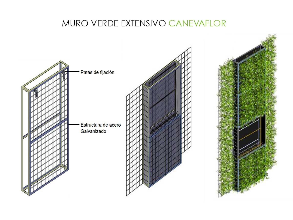 Muro Verde Extensivo