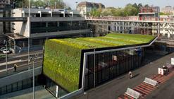 Materiales: Muros Verdes / Descontaminantes, Acústicos y Térmicos