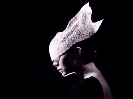 Jury Winner_Shapes Future Award_Yuan_Jiang_Ephemeral beauty. Image Courtesy of The Morpholio Project