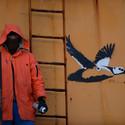 Stellers Eider Street Art, Vardø. Image Courtesy of Biotope