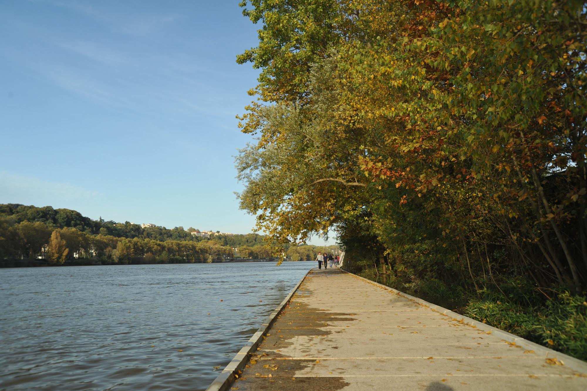 Paisaje y Arquitectura: Rives de Saône, sendero por la ribera del río que conecta naturaleza y ciudad / BASE, Courtesy of BASE
