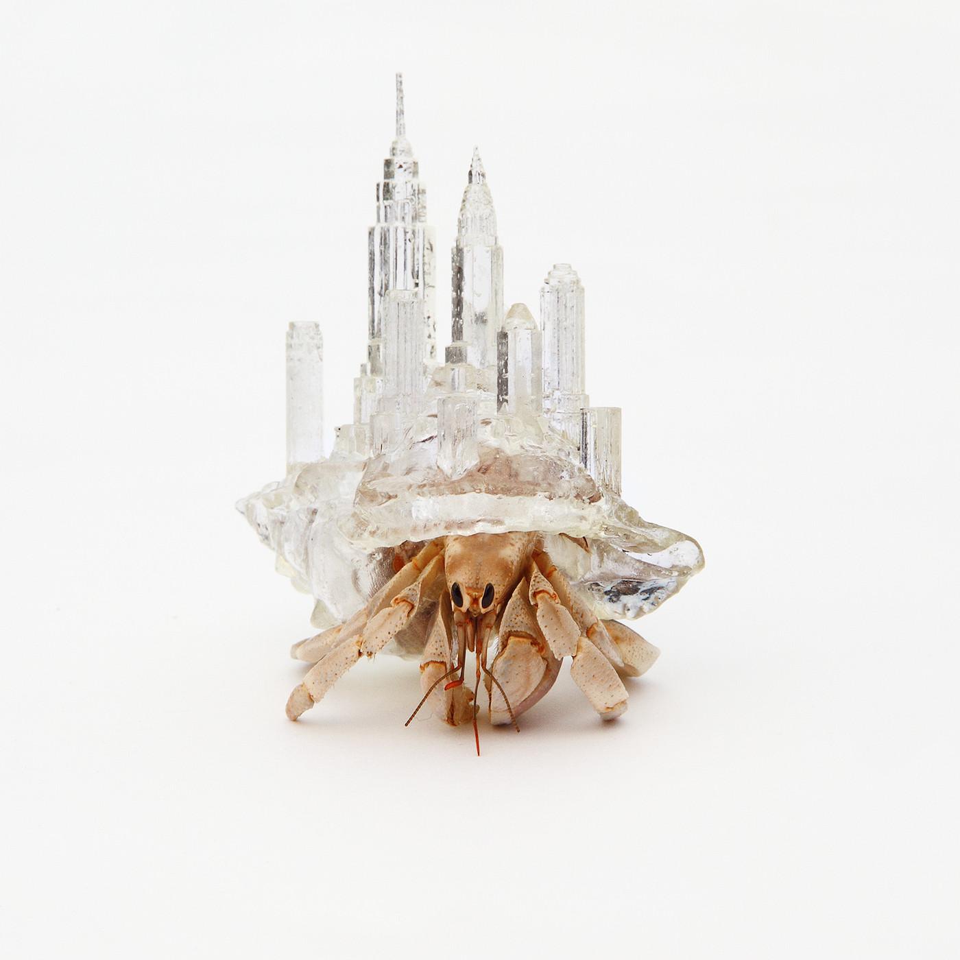 Arte y Arquitectura: ¿Por qué no hacer el refugio de un cangrejo ermitaño?, © Aki Inomata
