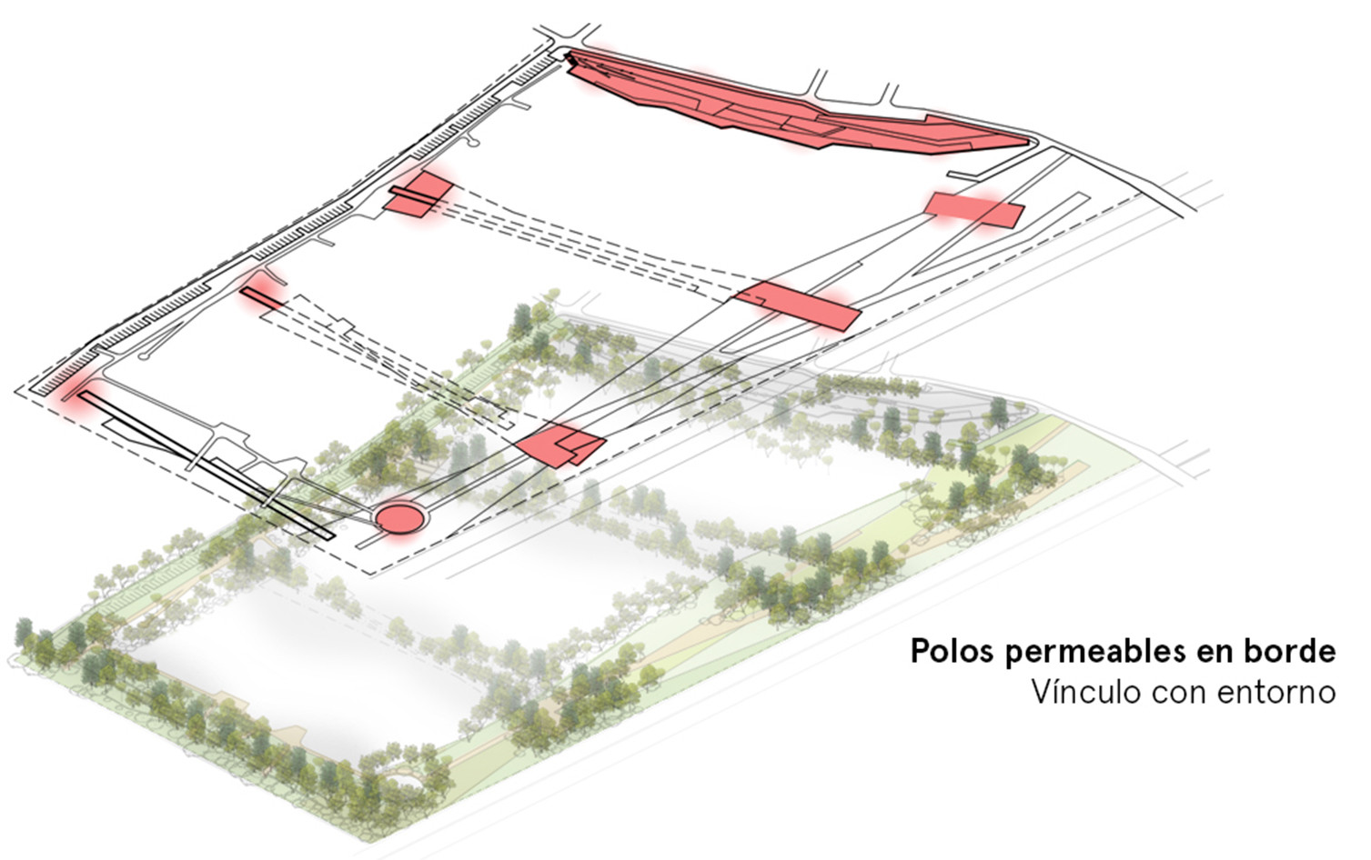 Polos permeables. Image Courtesy of Equipo Primer Lugar