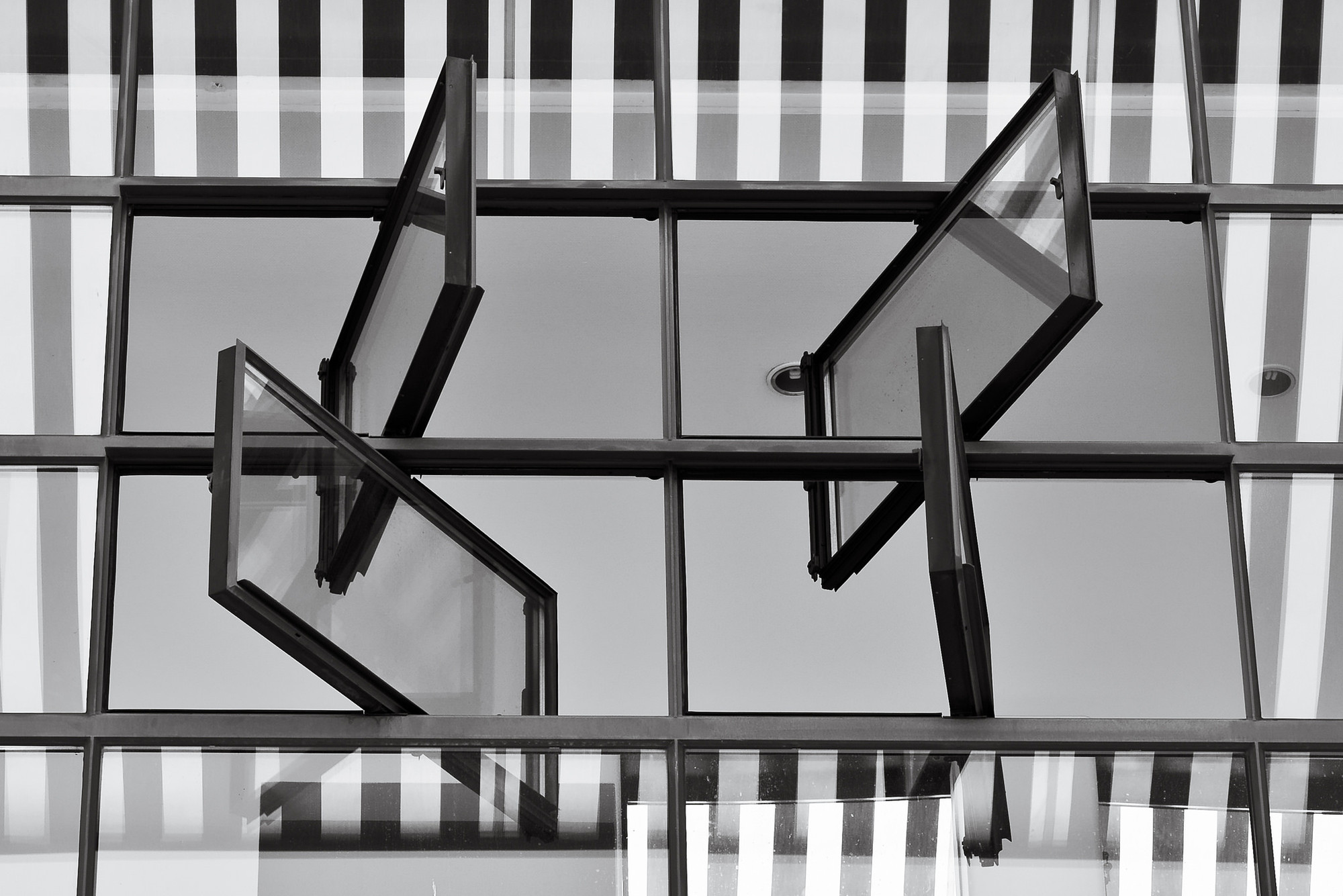 Fagus Factory walter gropius fenêtre