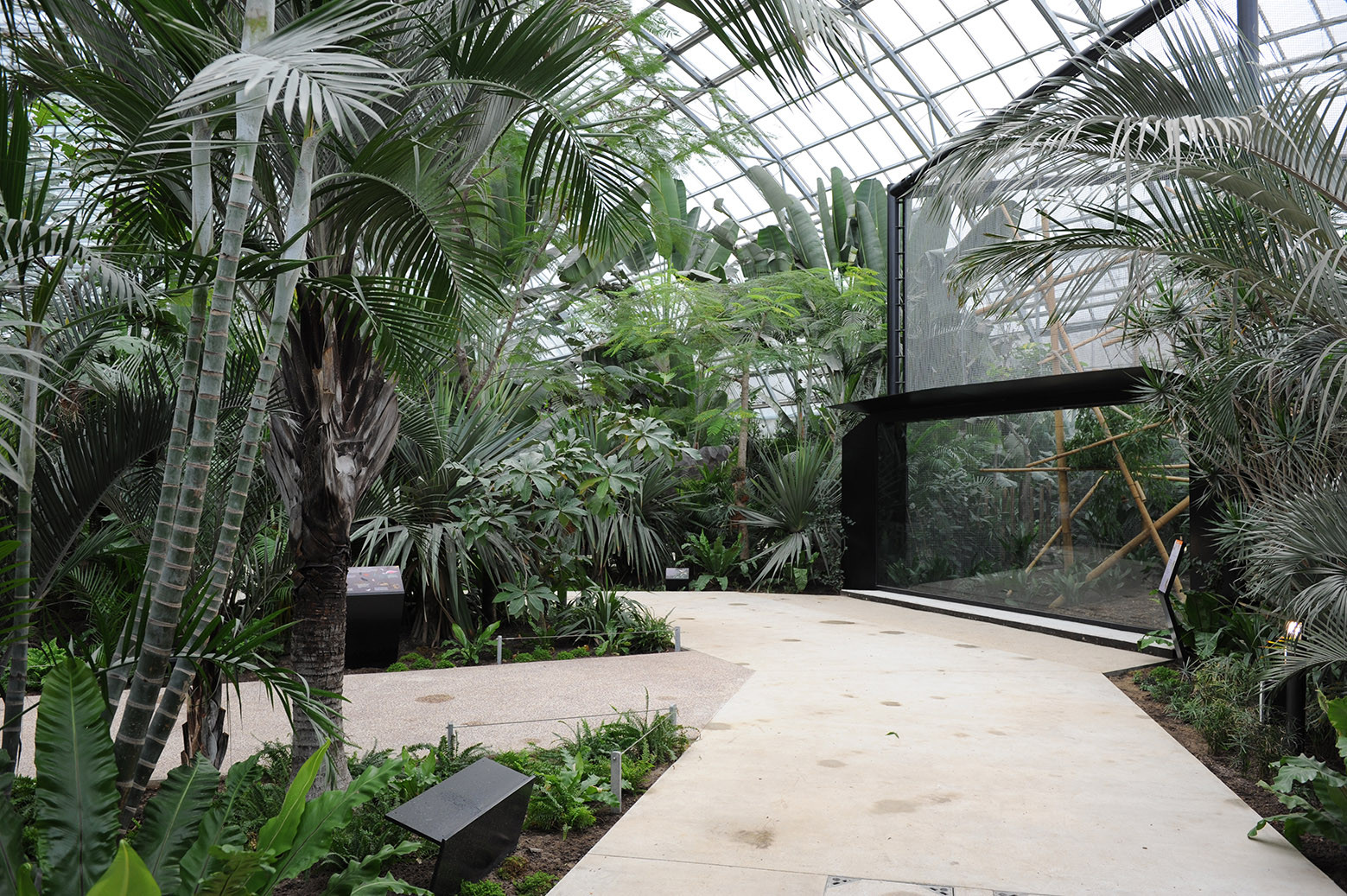 Paris Zoological Park / Bernard Tschumi Urbanists Architects + Veronique Descharrieres, © Claud Cieutat