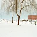 15. Luigi Ghirri Cemetery of San Cataldo, Modena; the ossuary in winter, 1986 Courtesy of the Luigi Ghirri Estate and Matthew Marks Gallery, New York © 2014 Eredi Luigi Ghirri. Image Courtesy of Barbican Art Gallery