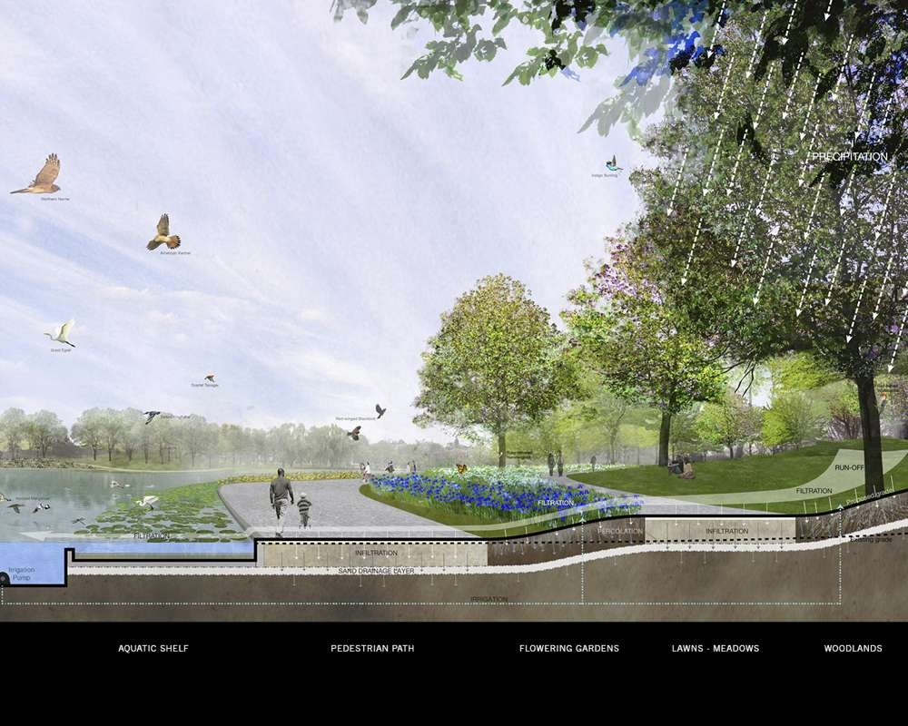 Ecology Section. Image © PWP Landscape Architecture and Rogers Partners