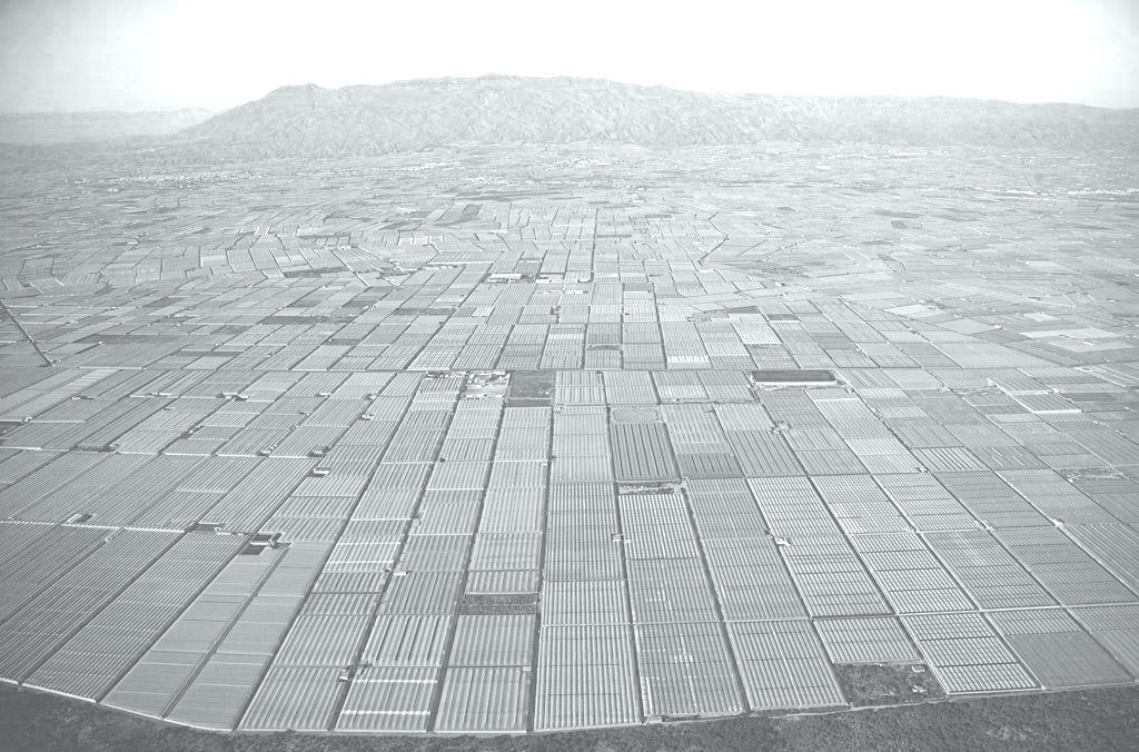 Vista aérea: Almería. Image Cortesia de DAT Pangea