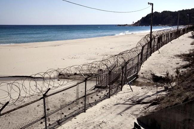 Muro que separa Corea del Norte y Corea del Sur. Cortesía de Pragmatismo Político