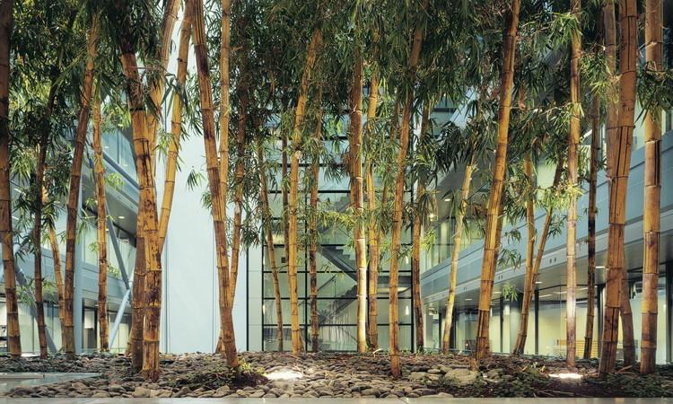 Cortesía de MVSA Architects