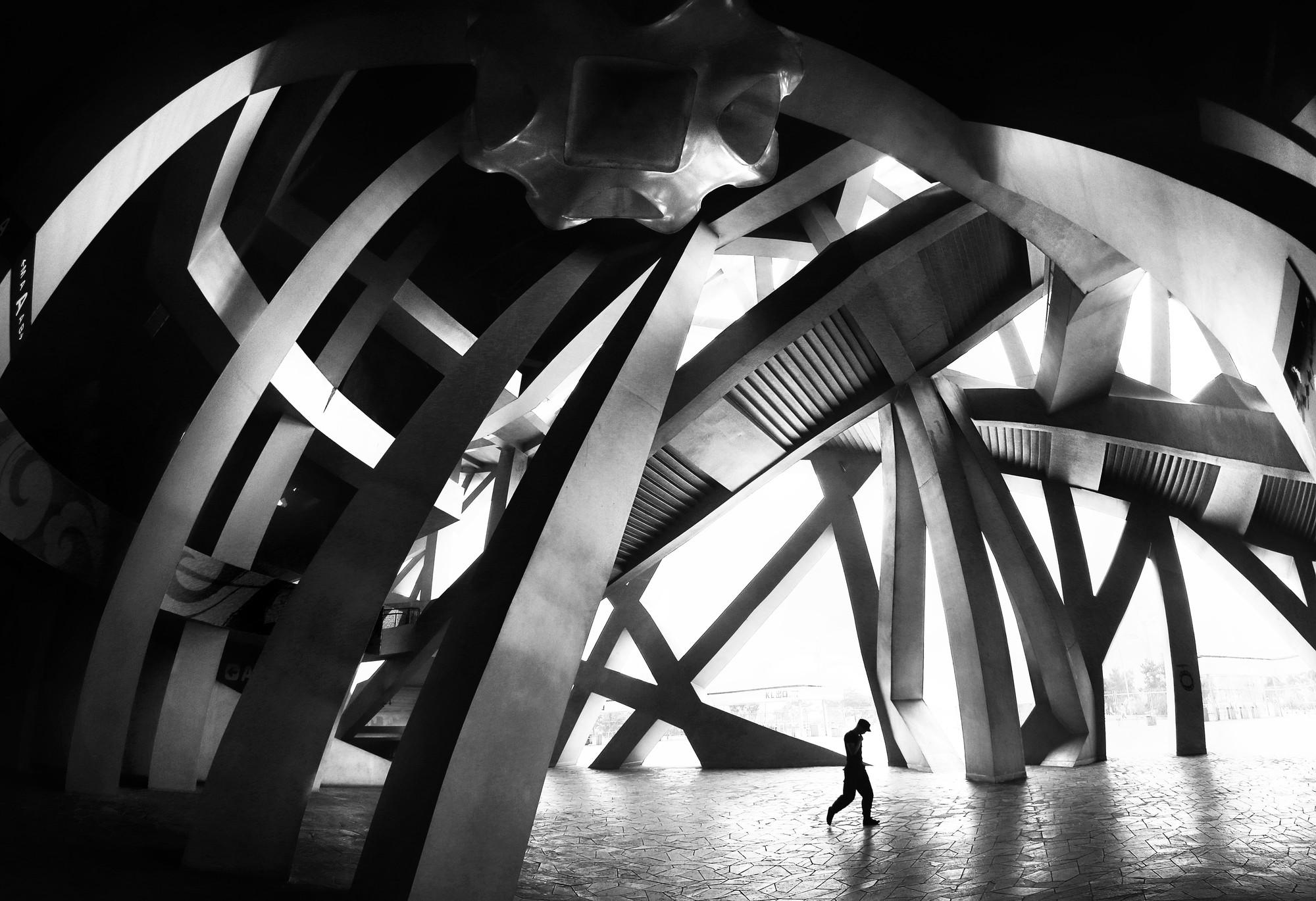 """Fotografía de Arquitectura: 15 finalistas nominados al """"Art of Building Photographer of the Year Award"""", Bird's Nest Puzzle Close-Up. Image © Mario Bejagan Cardenas"""