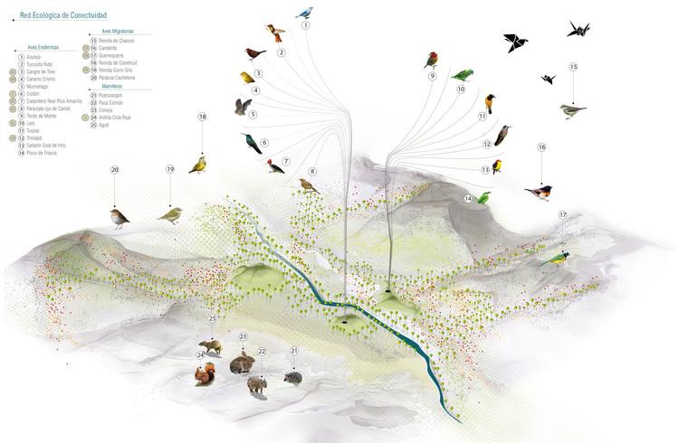 Esquema urbano: conectivdad ecológica. Image Cortesía de Célula Arquitectura