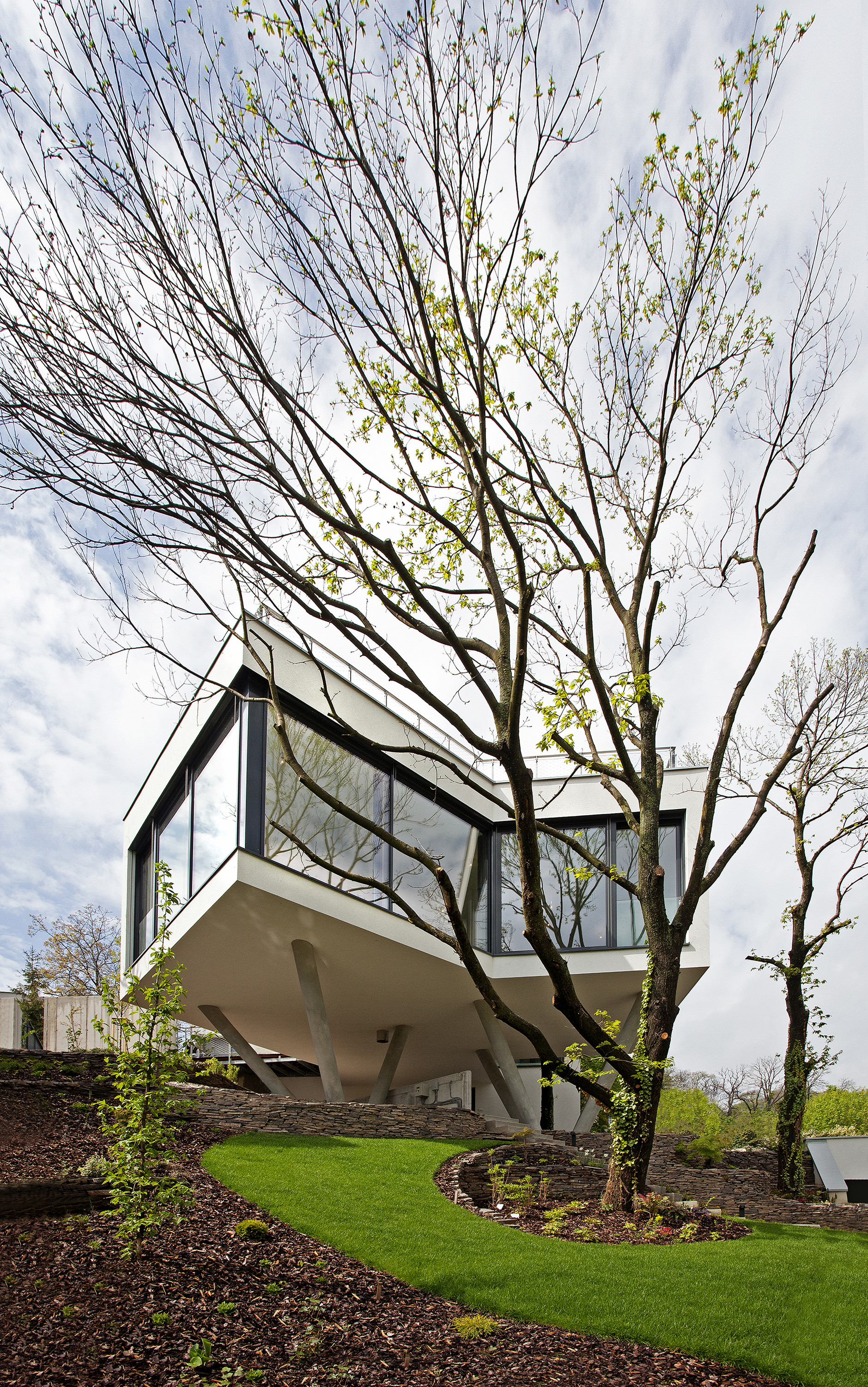 Gallery Of House Between The Trees Ebo Lich Architects 1