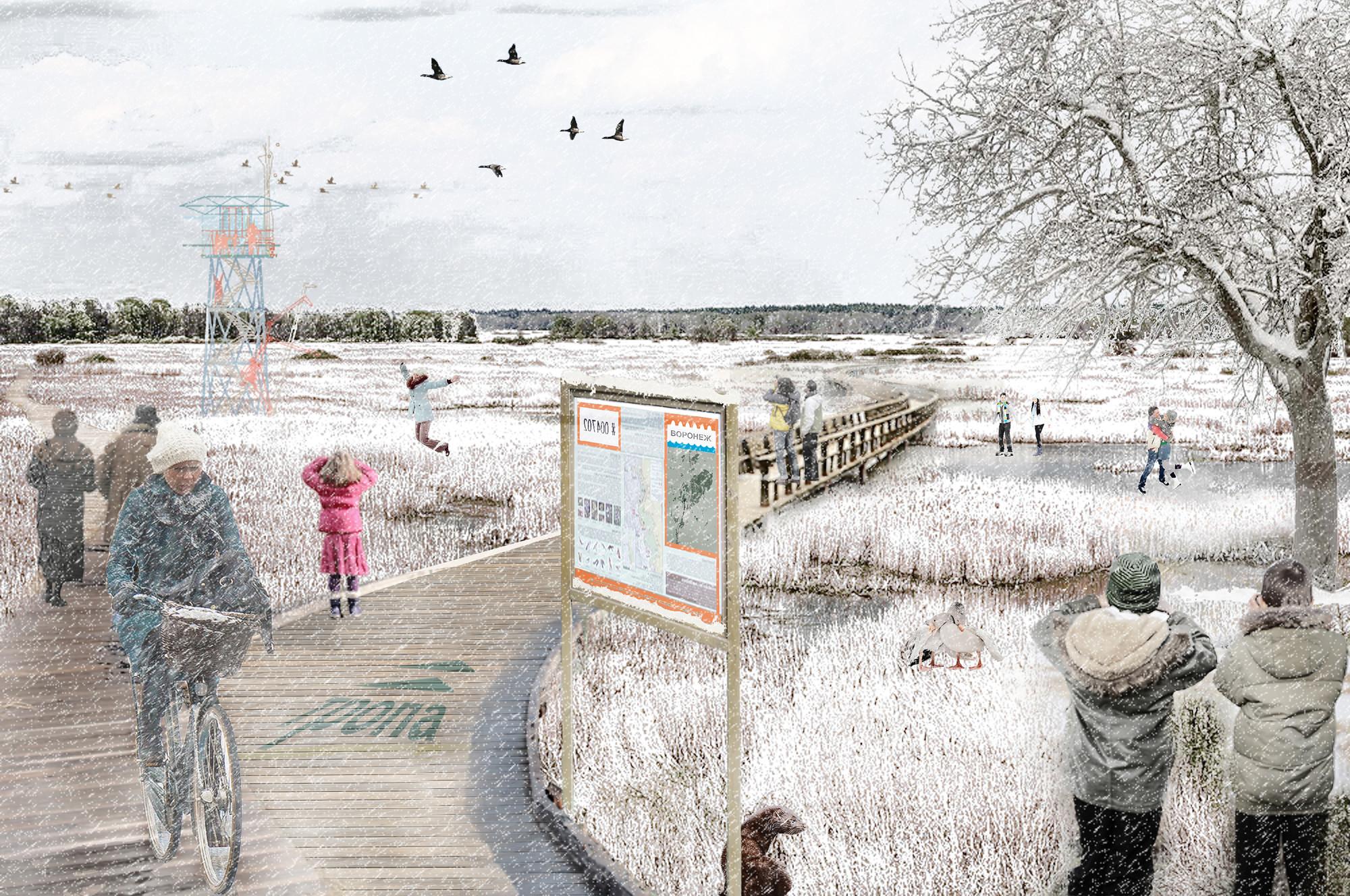 Senderos en humedales. Image Cortesia de Ecosistema Urbano