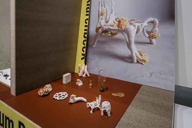 Mycelium Project. Image vía Het Nieuwe Instituut