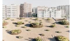 Paisaje y Arquitectura: Parque, jardines y cubierta verde de Caja Badajoz por Cjcpaisaje