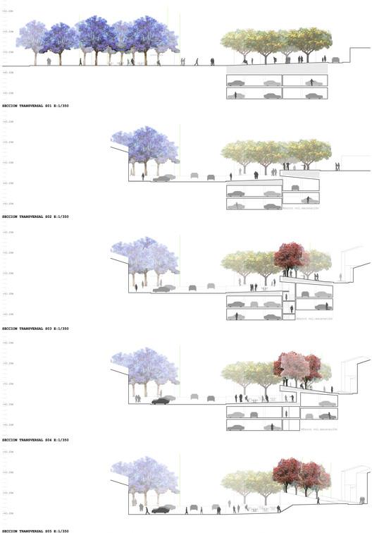 Secciones/Cortes transversales