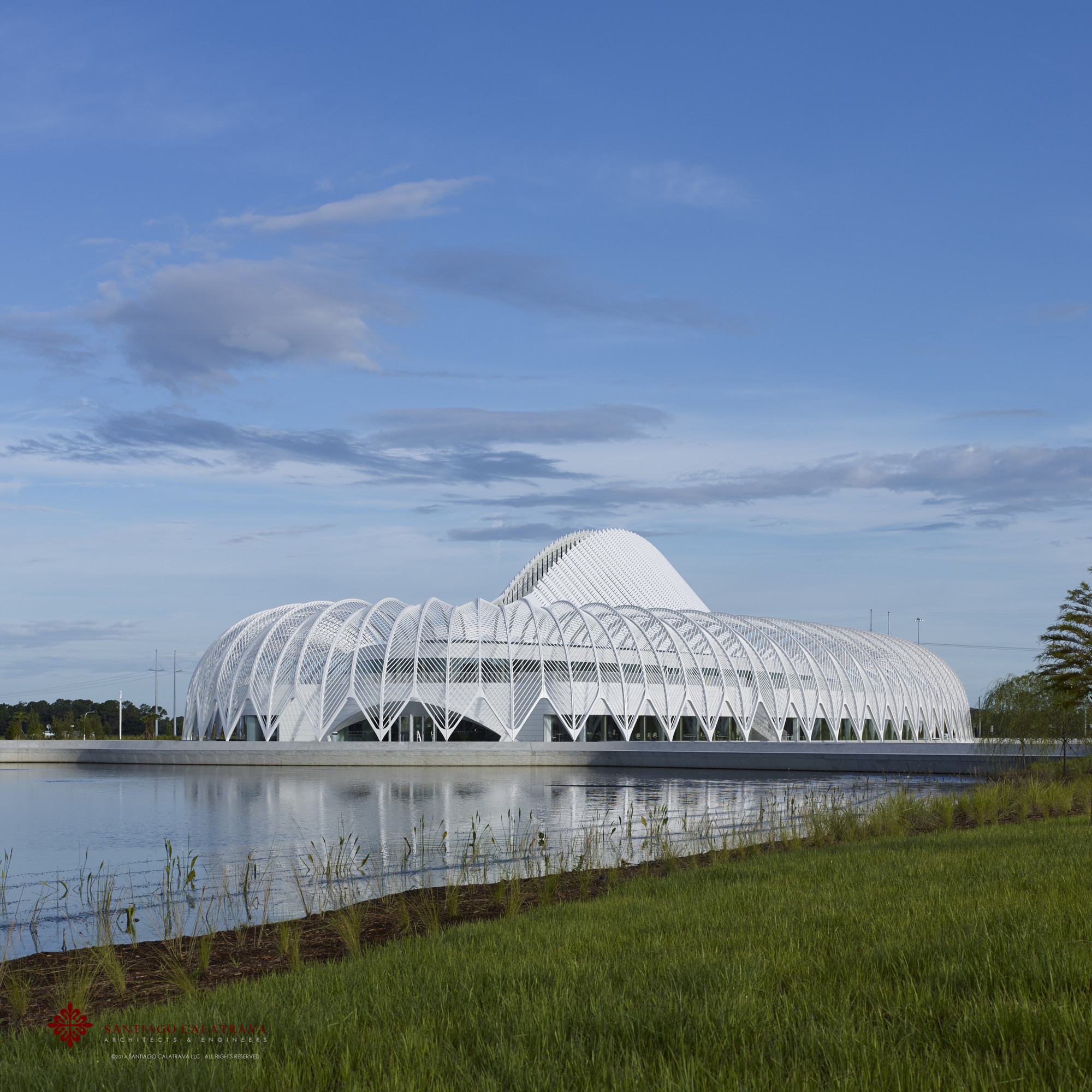 "Santiago Calatrava's Florida Polytechnic Building Awarded ""Best in Steel Construction"" by AISC, © Alan Karchmer for Santiago Calatrava"