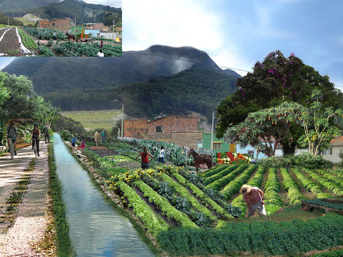 Agrocultivos. Image Cortesia de Diana Wiesner