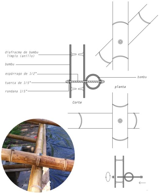 Conexión de dos bambú cruzados