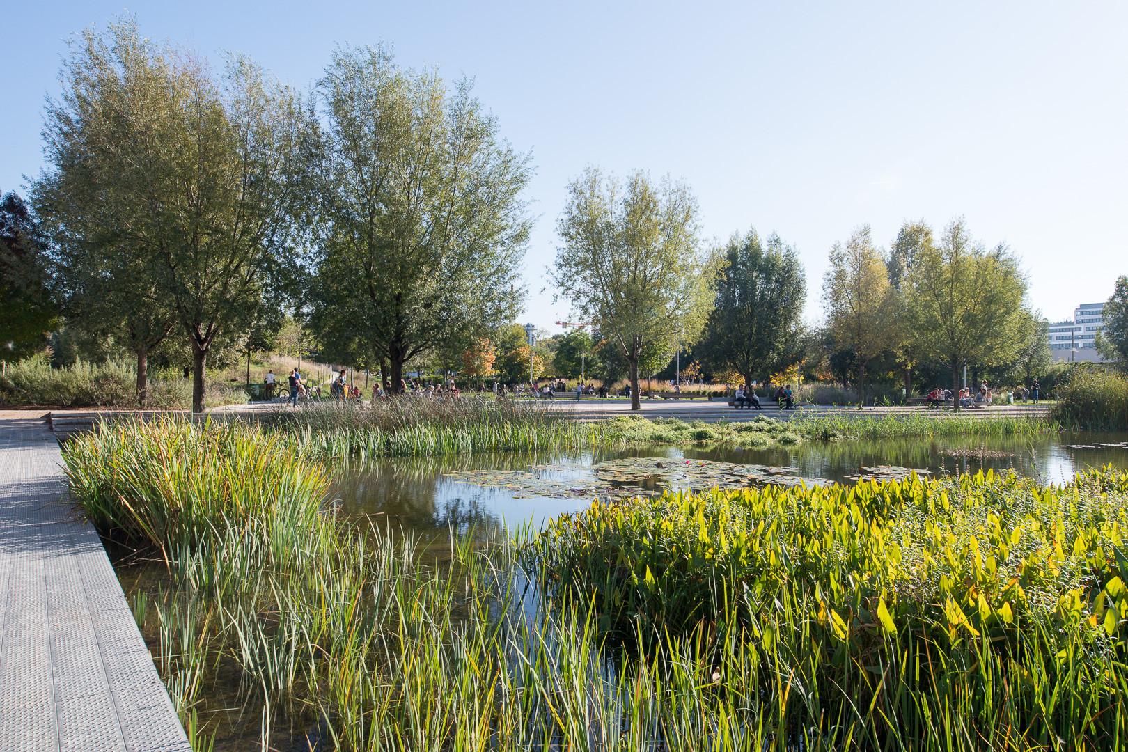 Paisaje y Arquitectura: Martin Luther King, un parque ecológico integral y conector de barrios , ©  Martin Arygyolo