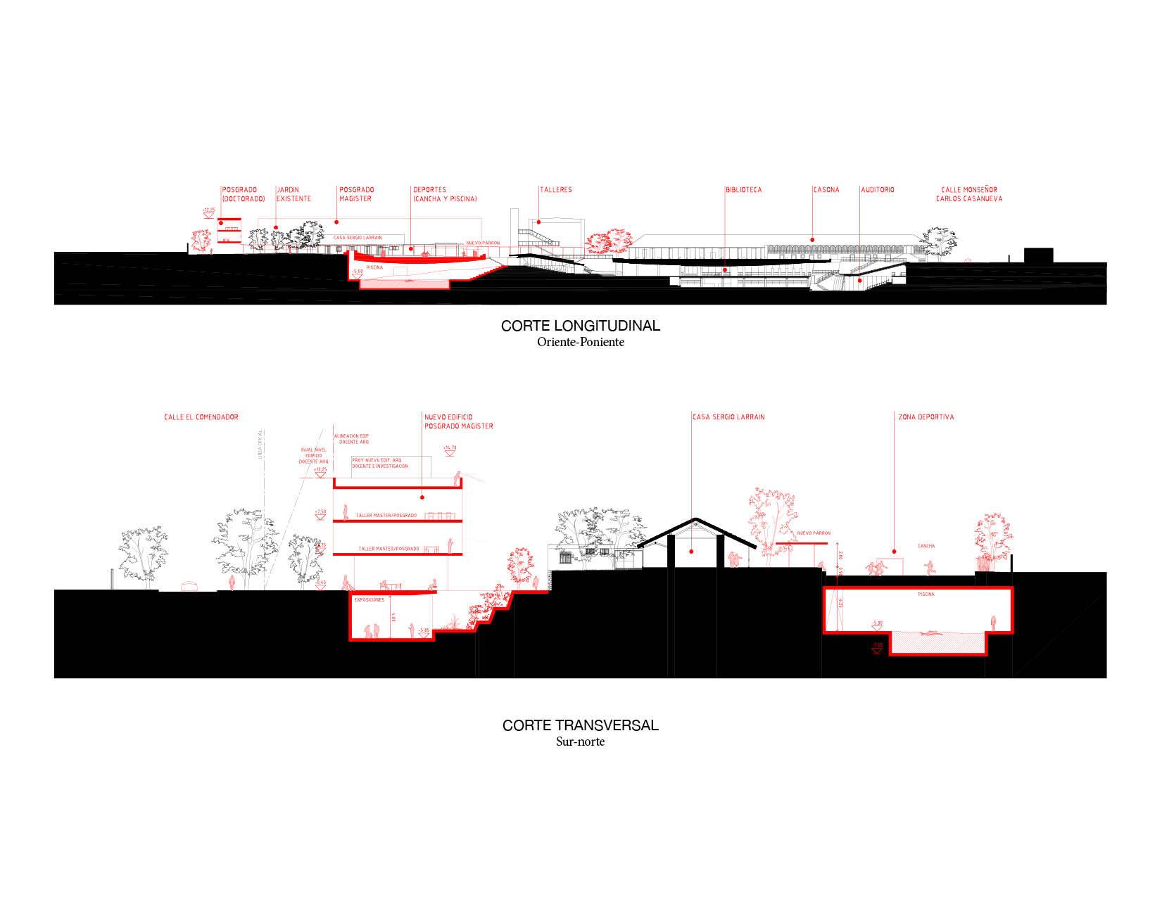Cortes/secciones: longitudinal y transversal