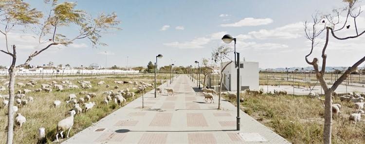 Torre-Pacheco, Murcia / Feb. 2013. Image Cortesía de Nación Rotonda