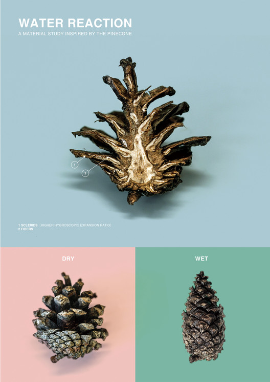 Building Elements Come Alive With This Pinecone Inspired