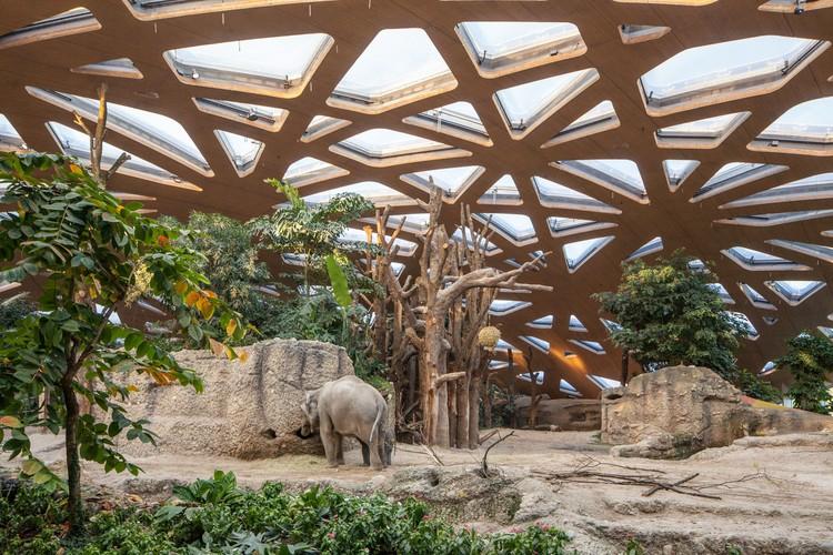 Casa del Elefante Zoo Zürich / Markus Schietsch Architekten, © Andreas Buschmann