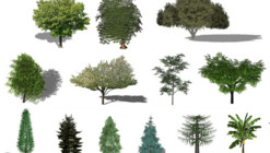 Refresh the Greenery in your Renders with this Free Library of Plants for SketchUp
