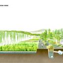 La depuradora verde