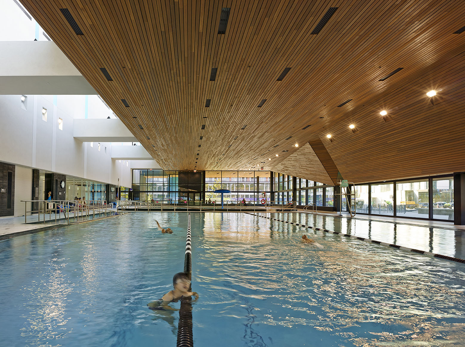 Gallery of regent park aquatic centre maclennan for Swimming pool architecture