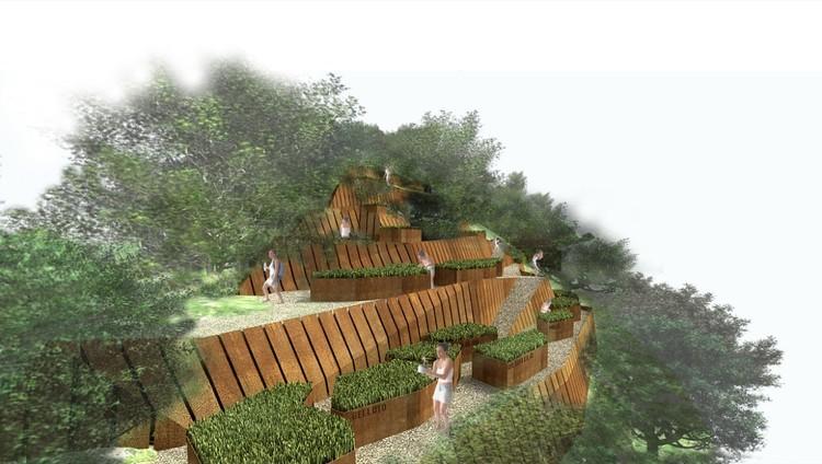 Vista terrazas de cultivo