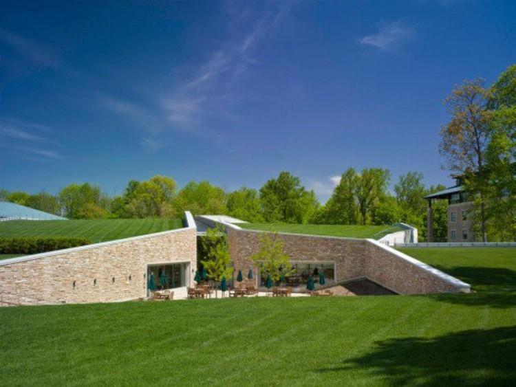 En detalle techos verdes plataforma arquitectura for Techos y paredes verdes