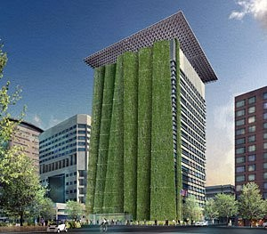 Green Wall Proposal for the Portland Federal Building © Scott Baumberger, Baumberger Studio