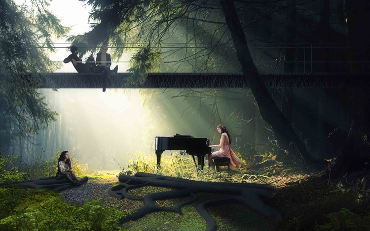 concert in the forest