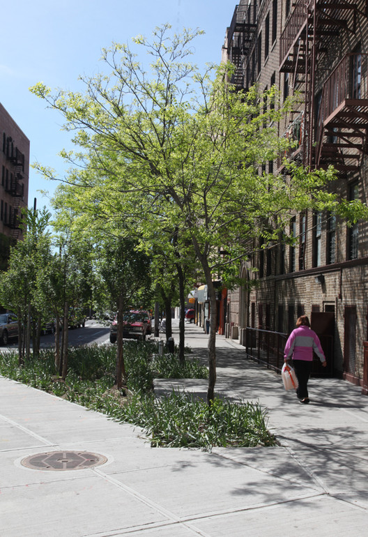 Hunts Point Ave Sidewalk Planting © New York City Economic Development Corporation