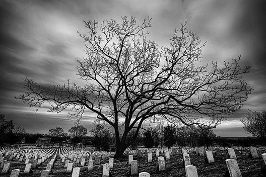 Arlington National Cemetery © Stuck in Customs