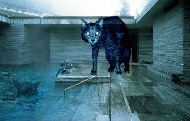 Thermeow Vals - Peter Zumthor