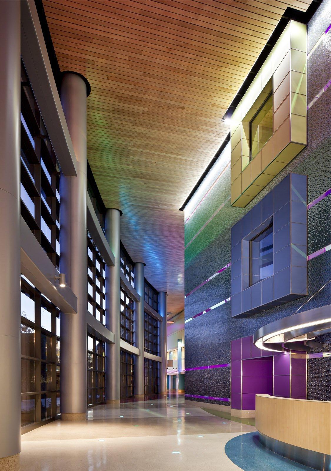 Gallery of Phoenix Children's Hospital / HKS Architects - 26
