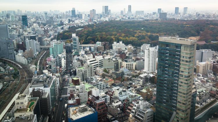 Land Sparing of Tokyo's Yoyogi Park. Image Courtesy of Flickr CC user spektrograf